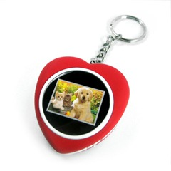 Heart Shaped Photo Keyring